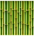 Green bamboo fence background vector image