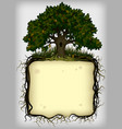 oak tree with roots frame vector image
