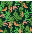 rowan pattern vector image