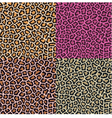 seamless leopard cheetah animal skin pattern vector image vector image