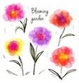 Set of blooming flowers vector image
