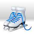 a pair ice skates vector image vector image