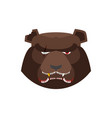 angry bear in green beret aggressive grizzly head vector image vector image