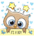 baby shower greeting card with cute owl boy vector image vector image