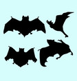 bat animal flying silhouette vector image