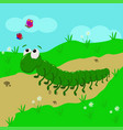 caterpillar in the meadow vector image