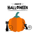 happy halloween cats pumpkin background ima vector image