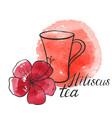 hibiscus tea vector image