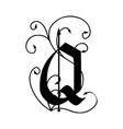 letter q with arrows vector image
