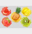set fruit juice splash watermelon citron vector image