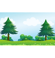 The pine trees at the hilltop vector image vector image