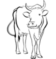 cow animal vector image