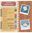 Arctic North Pole infographics statistical data