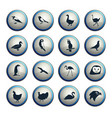 birds icon set vector image