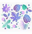 colorful jungle foliage vector image vector image