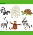 funny cartoon animal characters collection set vector image vector image