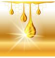 golden oil drops shiny sparkles vector image vector image