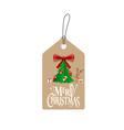 Merry Christmas Greeting Card with Christmas Santa vector image