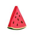 triangle slice of juicy watermelon tasty summer vector image