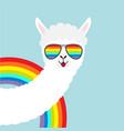 alpaca llama animal face in rainbow glassess cute vector image vector image