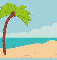 beach landscape with tree palm vector image vector image