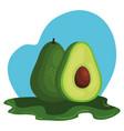 fresh avocado vegetable nature icon
