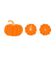 set of pumpkins pumpkin top view bottom view vector image vector image