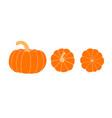 set of pumpkins pumpkin top view bottom view vector image