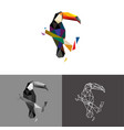 toucan low poly vector image