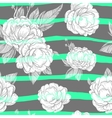 seamless ornament with hand drawn peony flower vector image