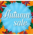 Autumn sale lettering design template vector image