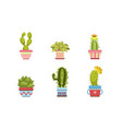 cactus and succulents in flower pots set potted vector image vector image