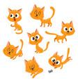 cute and funny red cat character showing different vector image vector image