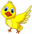 Cute Yellow bird cartoon posing vector image vector image