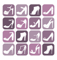 fashion shoes icon set vector image