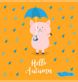 hello autumn pig holding blue umbrella rain drops vector image vector image