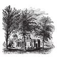 monticello jeffersons home vintage vector image vector image