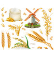 wheat rice oats barley flour mill grain 3d vector image vector image