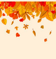 autumn leaves fall isolated background golden vector image vector image