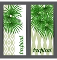 Banners with palms leaves Decorative image vector image vector image