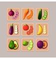 Delicious Vegetables vector image vector image