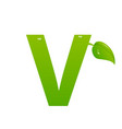 green eco letter v illiustration vector image