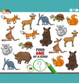 one a kind task for kids with wild animals vector image vector image
