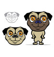 pug cartoon mascot vector image vector image