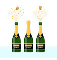 several bottles of champagne vector image