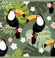 toucan seamless pattern vector image