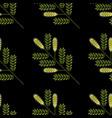 honey mesquite branch prosopis glandulosa leaves vector image vector image