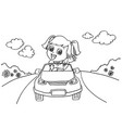 little girl driving a toy car coloring page vector image vector image