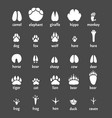 Paw animals nature symbols wild animals trails