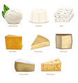 realistic detailed 3d cheese different types set vector image vector image